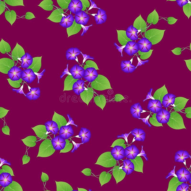 Purple Morning Glory on Violet Background. Vector Illustration.  royalty free illustration