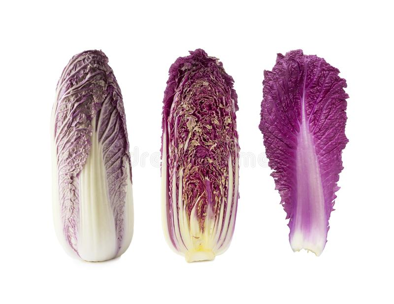 Purple napa cabbage. Red Napa, chinese cabbage on white. Purple chinese cabbage isolated on white background. Set of chinese cabbage leaf, head of cabbage and royalty free stock photo