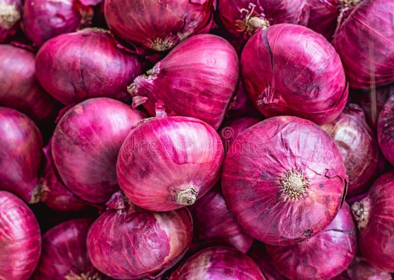 A bunch of purple onion bulbs royalty free stock image