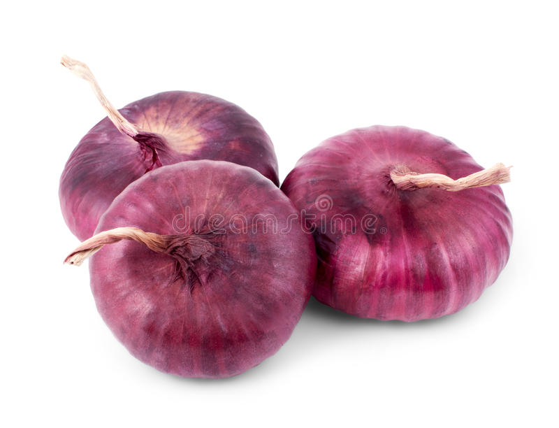 Purple onion isolated on a white. Background stock image