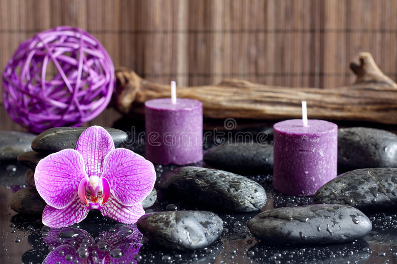 Purple orchid candles and zen stones spa concept. Still life royalty free stock photography