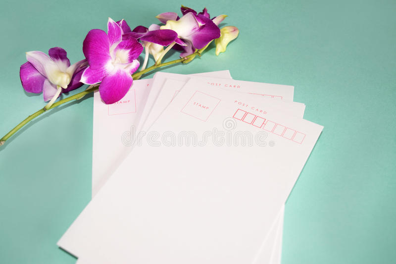 Purple Orchid Dendrobium with postcard stock photos