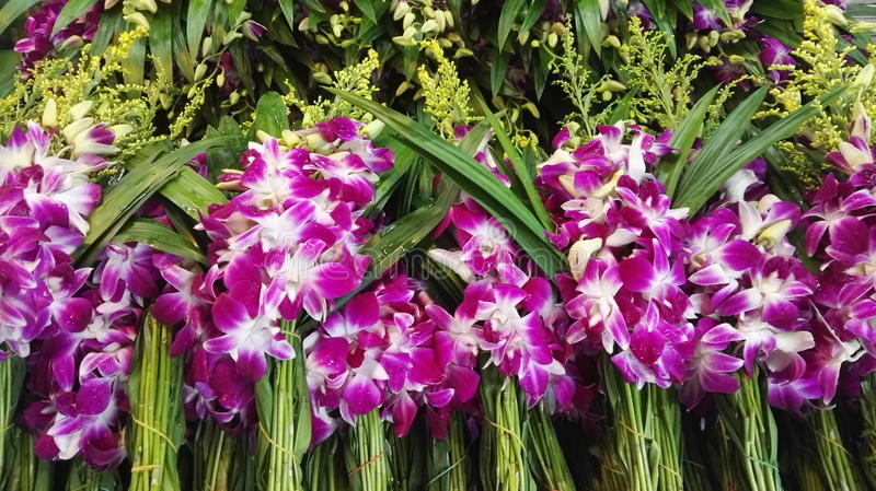 Purple orchid flowers at a Thai market stock photos