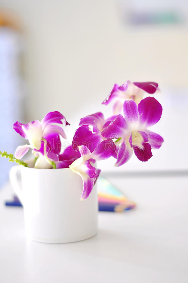 Download Purple Orchid Stock Photo - Image: 39270763