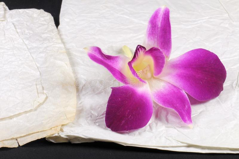 Purple orchid on stained crumple paper. Selective focus. Purple orchid on stained crumple paper royalty free stock images