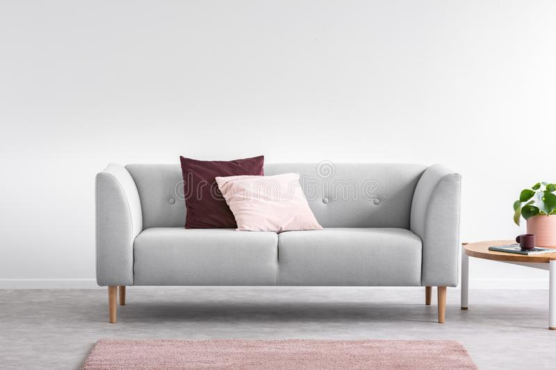 Pink pillow on the grey comfortable couch in bright living room interior with pink carpet and coffee table, real. Purple and pastel pink pillow on the grey stock photos
