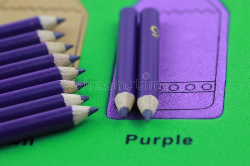 purple pencil crayon of row royalty free stock photography