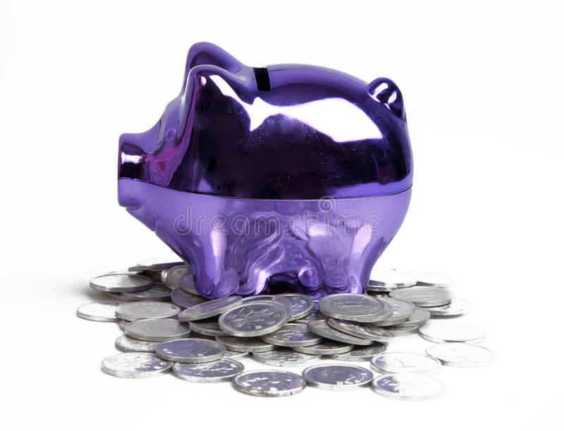 Download Purple piggy bank stock image. Image of pile, fund, lots - 19393735