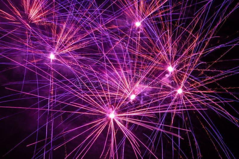 Purple, pink and orange fireworks. Bright violet, pink and orange firework display in the night sky