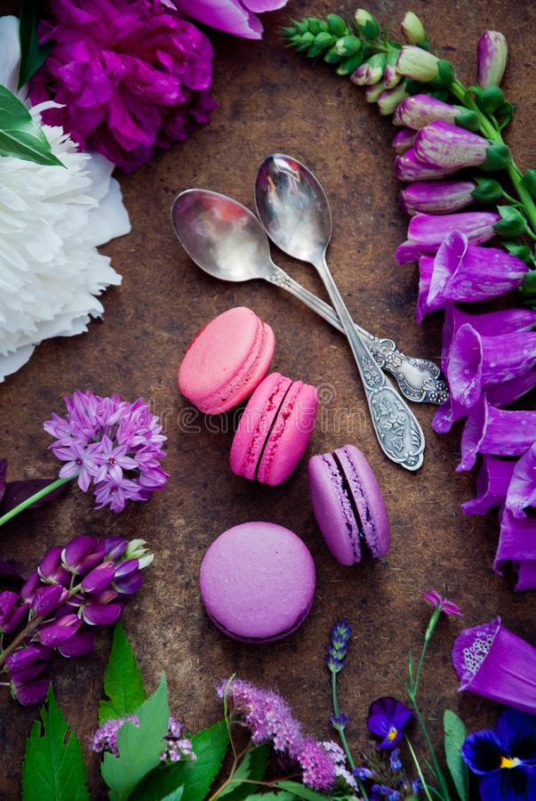 Purple and pink various flowers and Purple and pink macaroons stock image