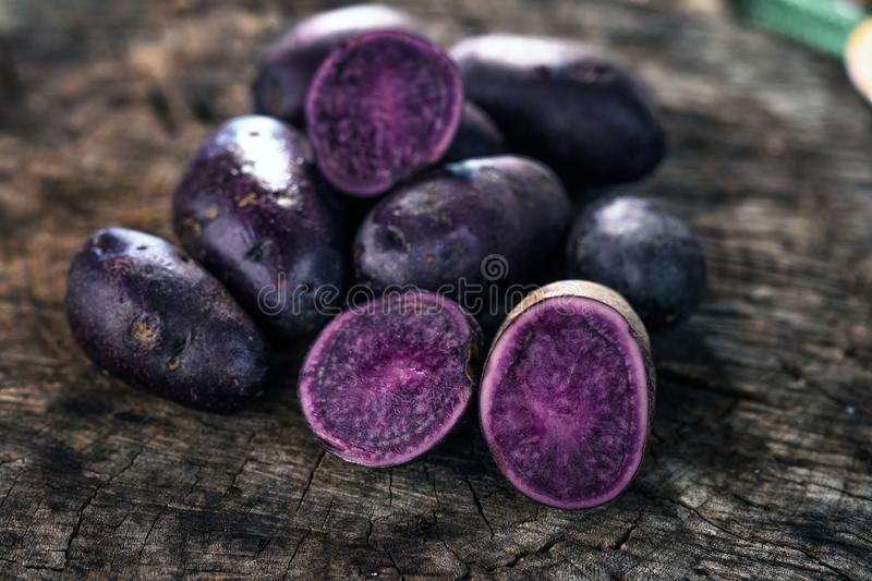 Purple Potatoes. On rustic background royalty free stock photos