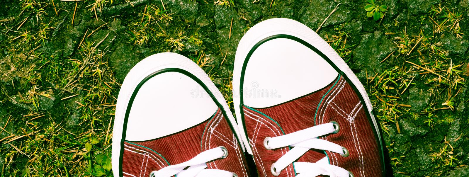 Purple red pink canvas sneakers in natural environment - youth attitude royalty free stock photos