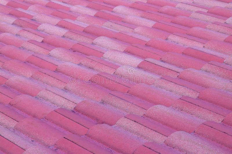 Purple roof texture royalty free stock image