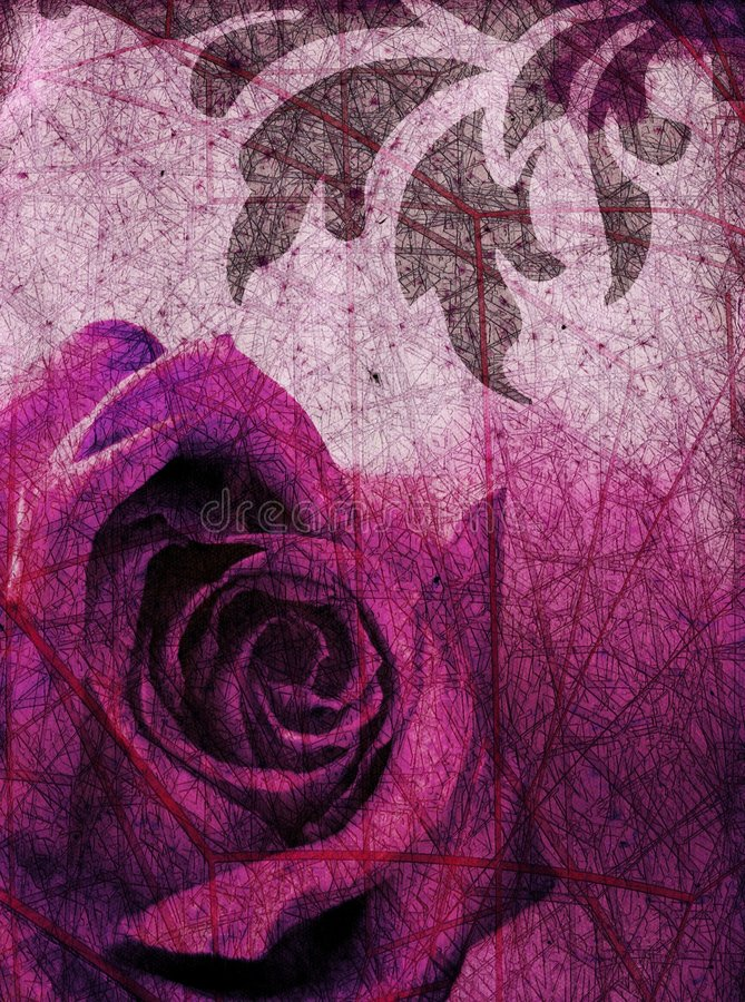 Free Purple Rose Background Royalty Free Stock Photography - 612557