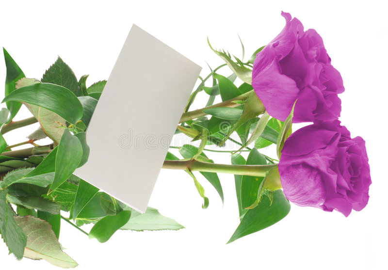 Download Purple Roses With Blank Love Note Stock Image - Image: 608673