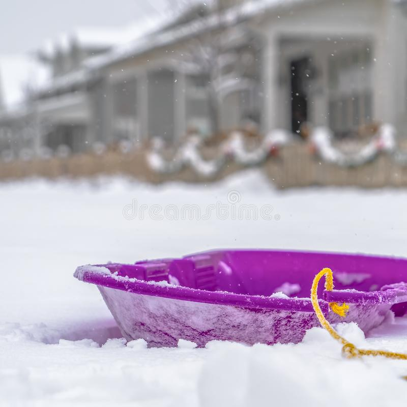 Purple sled on a bed of snow in Daybreak Utah royalty free stock photo