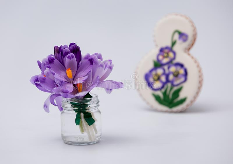 Purple snow-covered snowdrops in weight. Gingerbread cookies. March 8th. stock photos