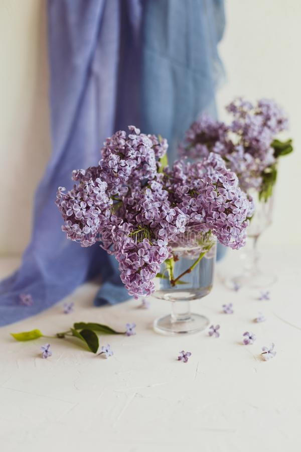 Purple spring lilac flowers still life white. Purple spring lilac flowers still life on white background in the morning. Glass vase with water and purple lilac royalty free stock images
