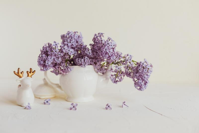 Purple spring lilac flowers still life on white. Background in the morning. Small tea pot and a cup are full of purple flowers stock image