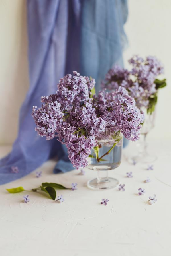 Purple spring lilac flowers still life white. Purple spring lilac flowers still life on white background in the morning. Glass vase with water and purple lilac stock images