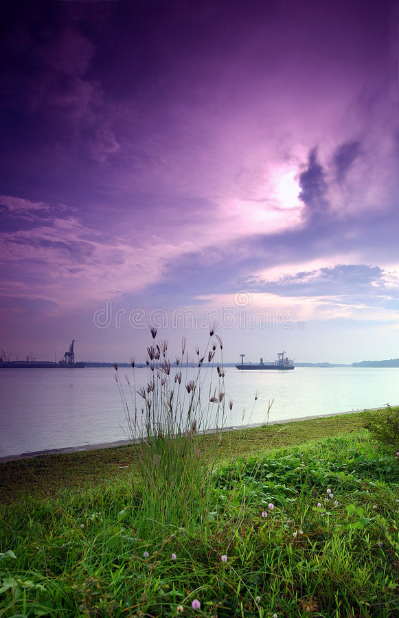 Purple sunrise, seaside stock photography
