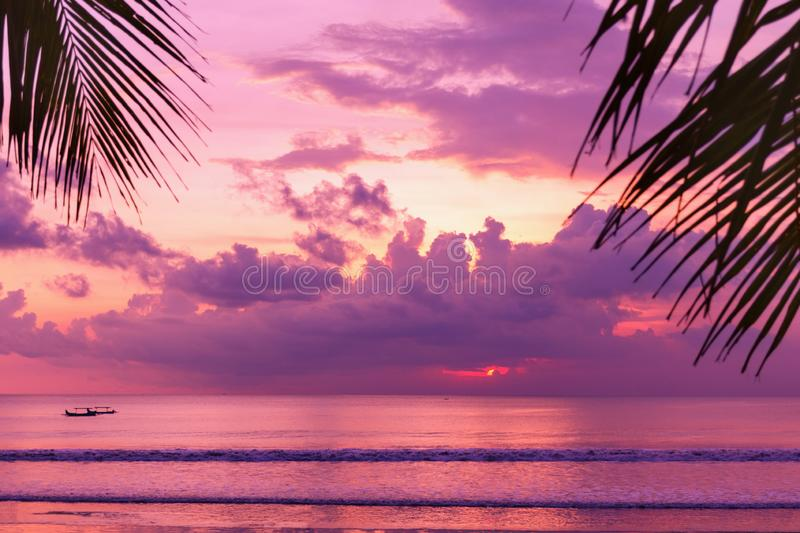 Purple sunset on the beach. View of the shore through palm leaves. stock photos