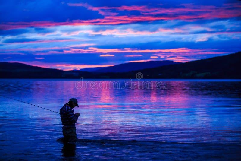 Purple sunset stock image
