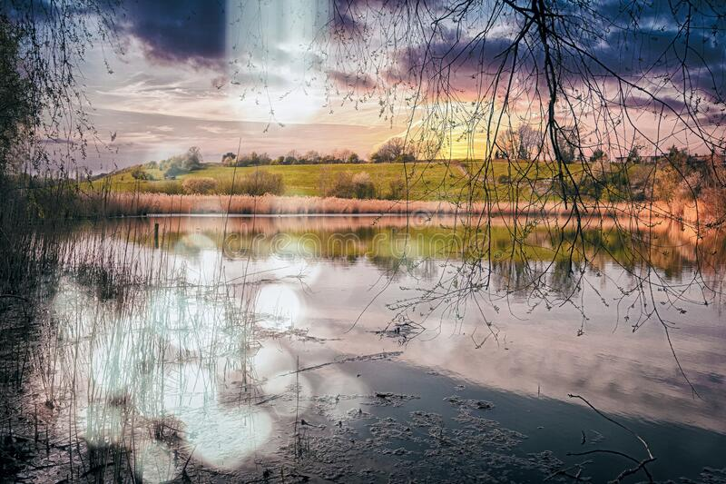 A pond with grass next to a body of water. Purple sunset mood on a pond in a dreamy atmosphere royalty free stock images