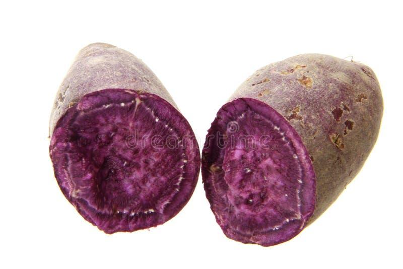 Purple sweet potato. Fresh purple sweet potato isolated on the white background royalty free stock photo