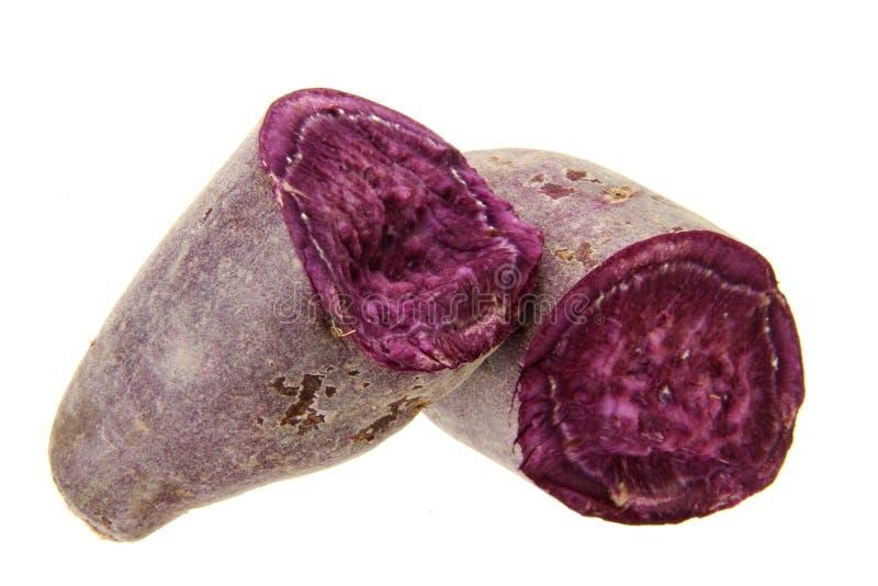 Purple sweet potato. Fresh purple sweet potato isolated on the white background royalty free stock images