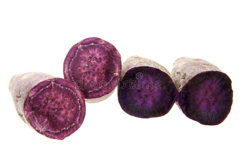 Purple sweet potato. Fresh purple sweet potato isolated on the white background royalty free stock image