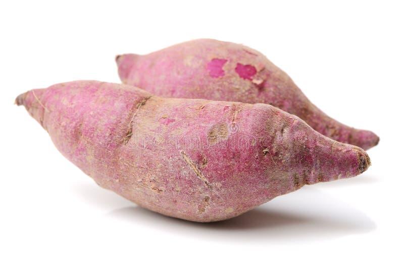 Purple sweet potato. Isolate on white background stock image