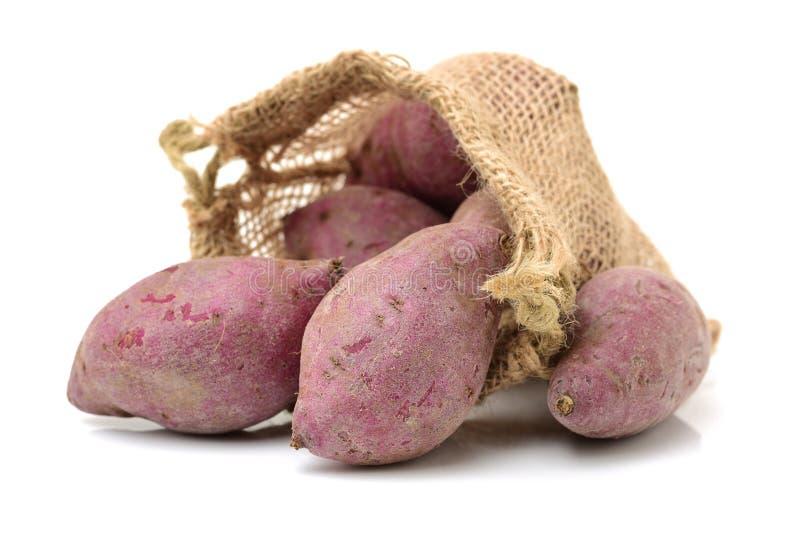 Purple sweet potato. Isolated on white background stock photo