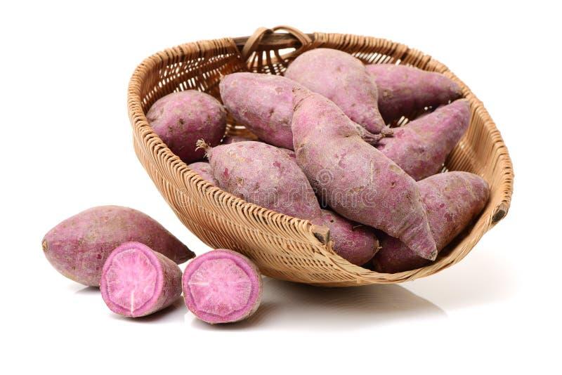 Purple sweet potato. Isolated on white background stock photos