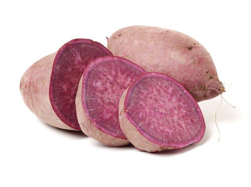 Purple sweet potato. Isolated on white background royalty free stock photos