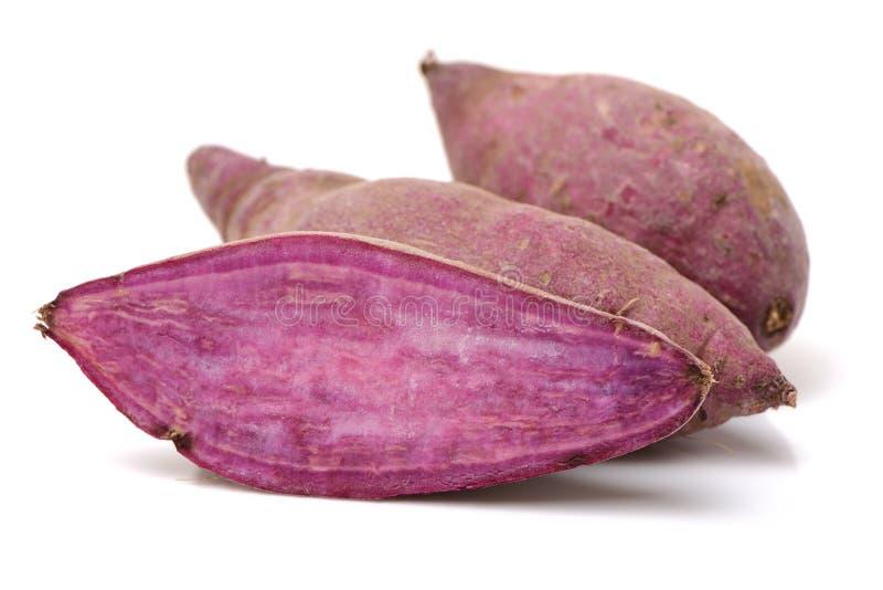 Purple sweet potato. On a white background royalty free stock image