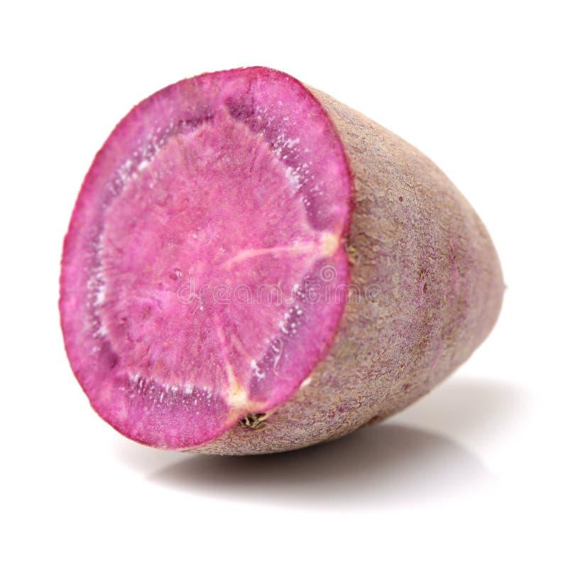 Purple sweet potato. On the white background stock images