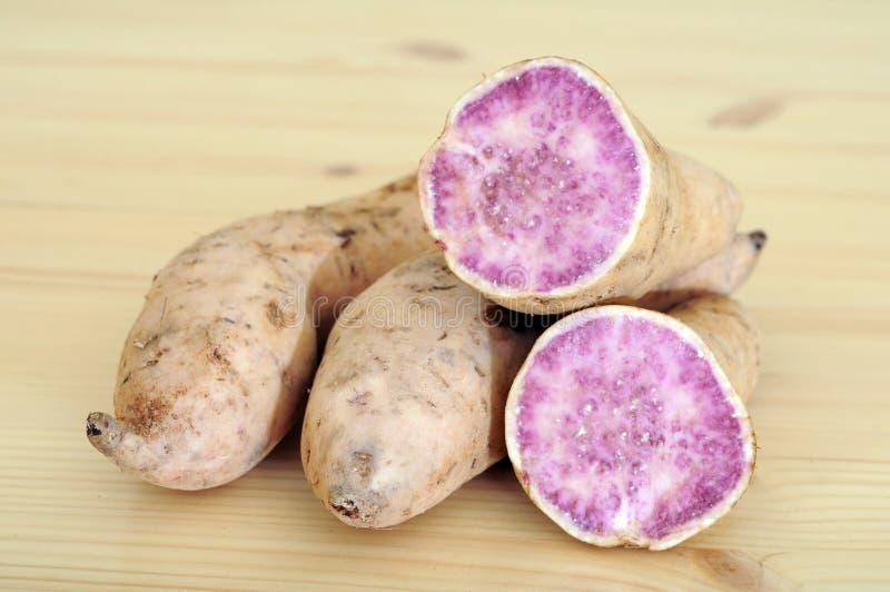 Purple sweet potato. And sample cut display at market place stock photos