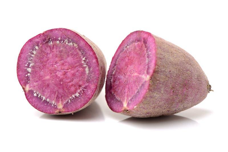 Purple sweet potato. On white background stock photos