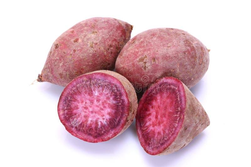 Purple sweet potato. Is on the white background stock image