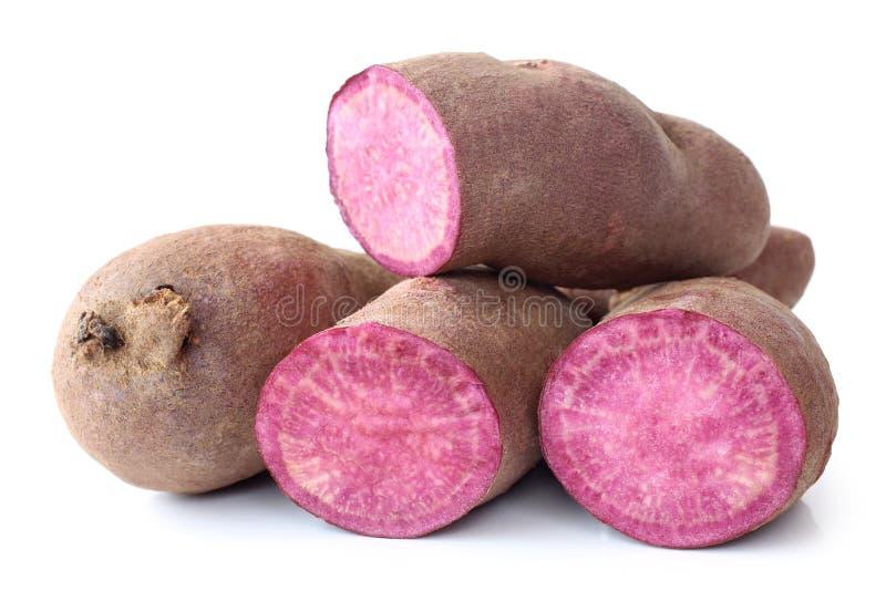 Purple sweet potato stock photography