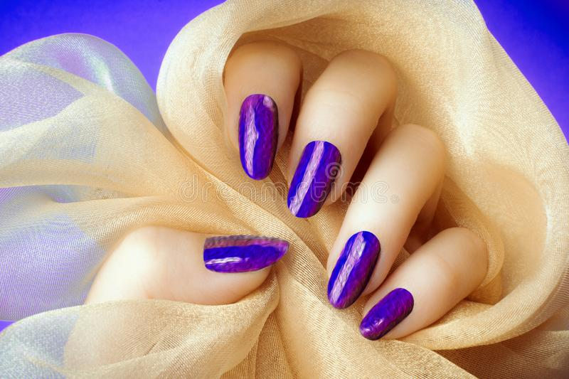Purple textured nails manicure. Female hand with textured purple blue nails is holding a beige decoration on purple blue background, manicure and nail care stock photos