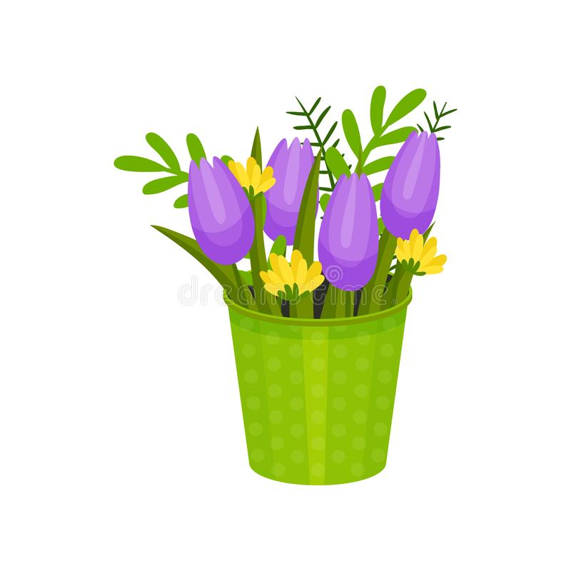 Purple tulips and wild yellow flowers in green bucket. Spring bouquet. Floral composition. Flat vector design. Purple tulips and wild yellow flowers in bright vector illustration