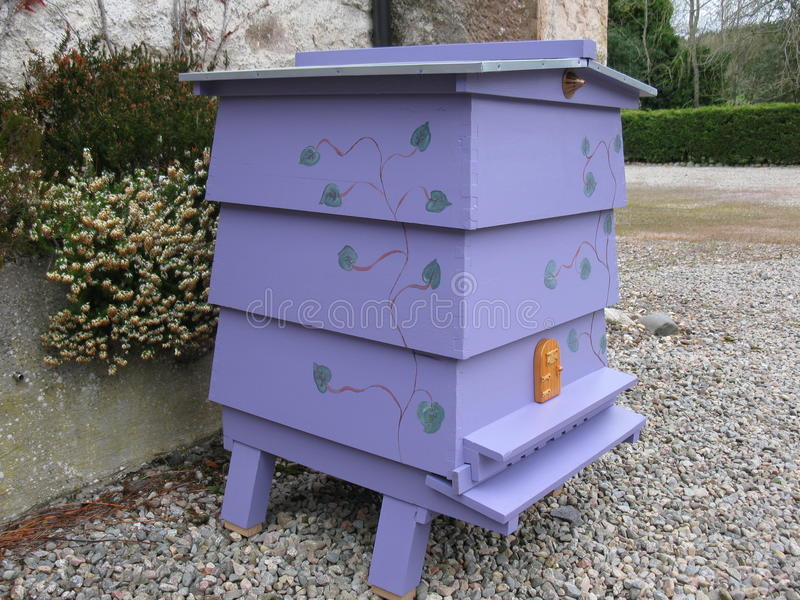 Purple WBC Beehive royalty free stock images