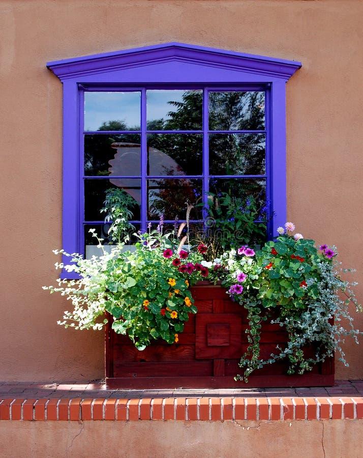 Free Purple Window Stock Image - 3493231