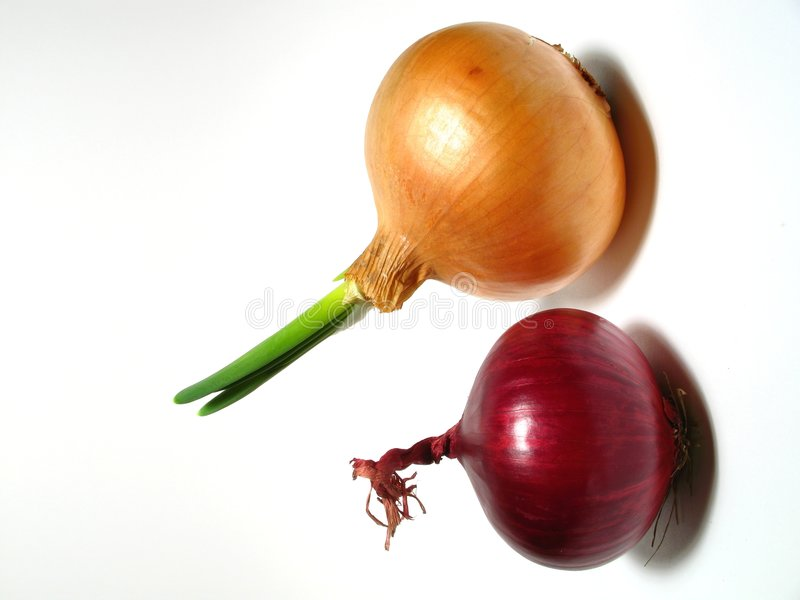 Download Purple and yellow onion stock photo. Image of food, white - 4235026