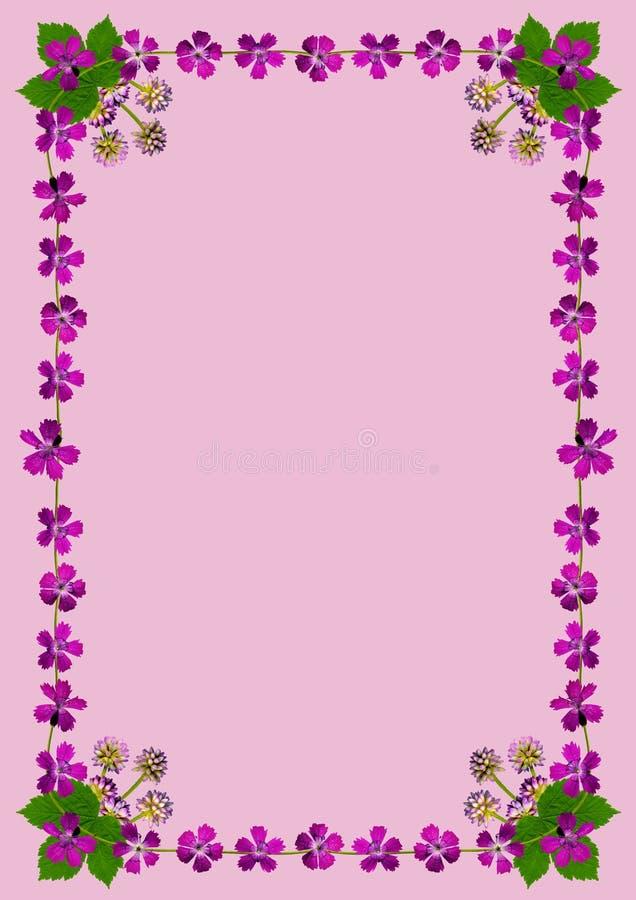 PurpleBlossomsFrameDinPink1 απεικόνιση αποθεμάτων