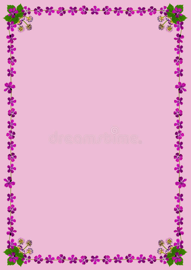 PurpleBlossomsFrameDinPink2 ελεύθερη απεικόνιση δικαιώματος
