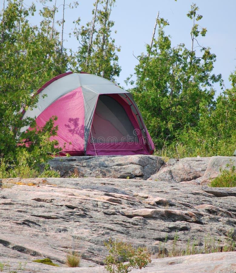purplen vaggar tenten royaltyfri foto