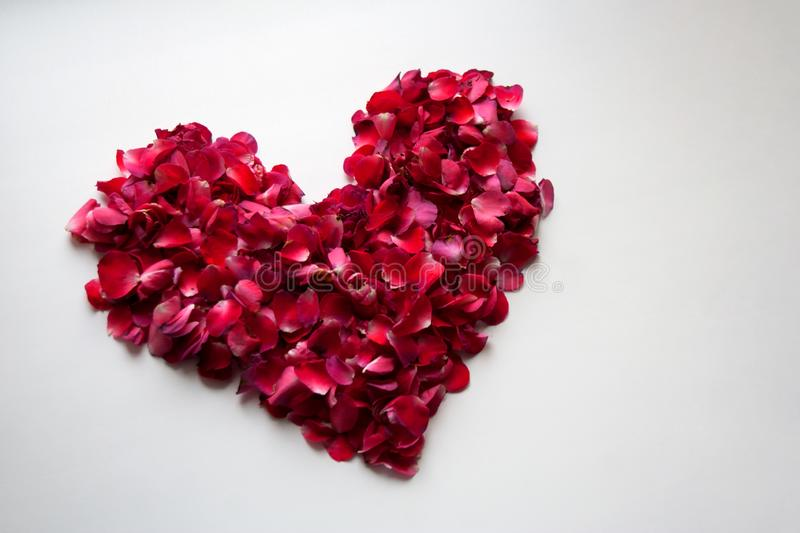 Purplish red floral heart composition. Isolated on white background stock images